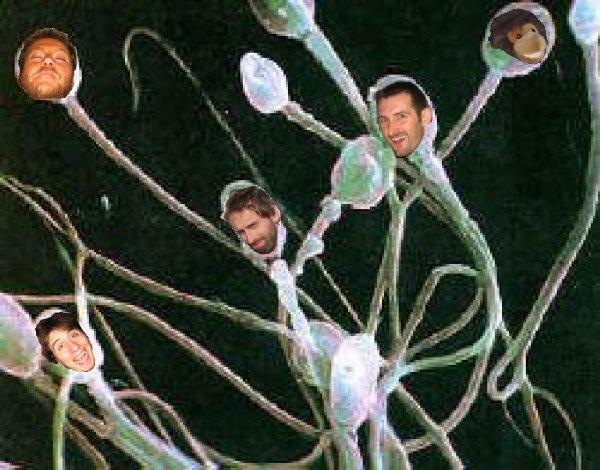 Смотреть сперма на трусиках